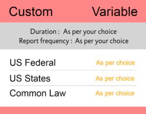 tm-monitoring-united-states-custom