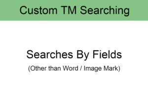 7. Custom TM Searching