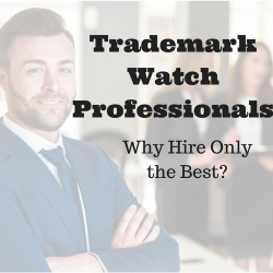 Trademark Watch Professionals