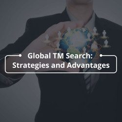 Global TM Search Strategies and Advantages