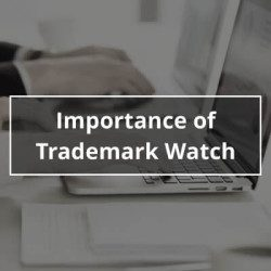 Importance of Trademark Watch