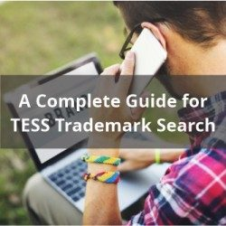 A Complete Guide for TESS Trademark Search