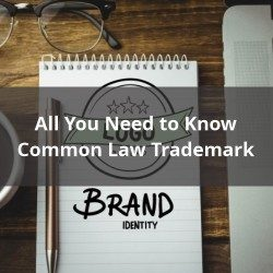 All You Need to Know About Common Law Trademark