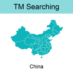 6. China TM Searching