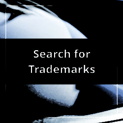 search for trademarks