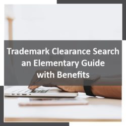 Trademark Clearance Search – an Elementary Guide with Benefits