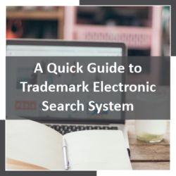 A Quick Guide to Trademark Electronic Search System