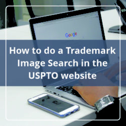 How to do a Trademark Image Search in the USPTO website