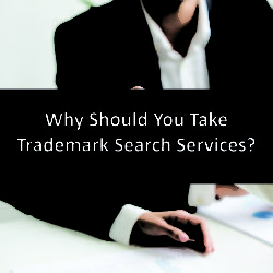 Why Should You Take Trademark Search Services