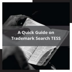A Quick Guide on Trademark Search TESS