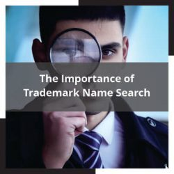 The Importance of Trademark Name Search