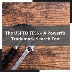 USPTO TESS – A Powerful Trademark Search Tool