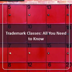 trademark classes