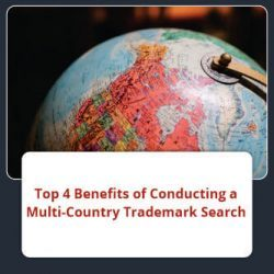 multi-country-trademark-search
